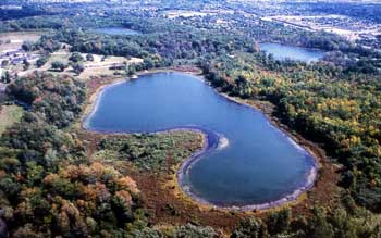Aerial View of Ponds